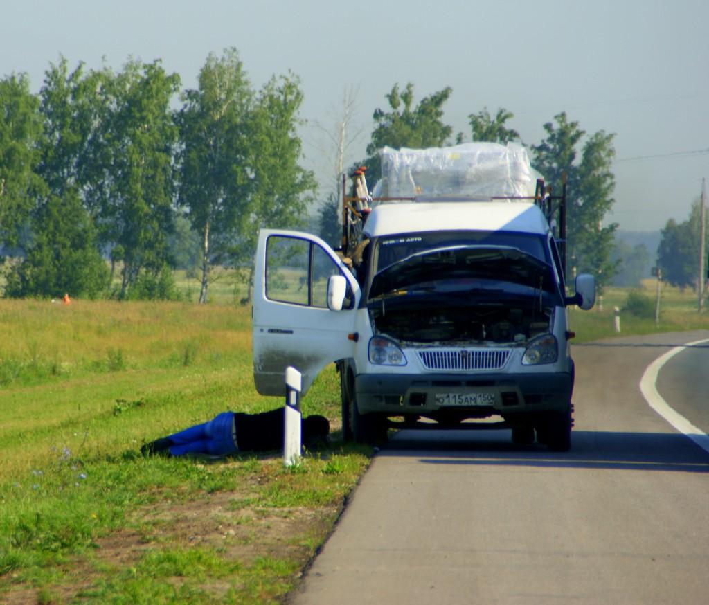 Zdjęcia: Terbush, Terbush, Senność na  drodze  , ROSJA