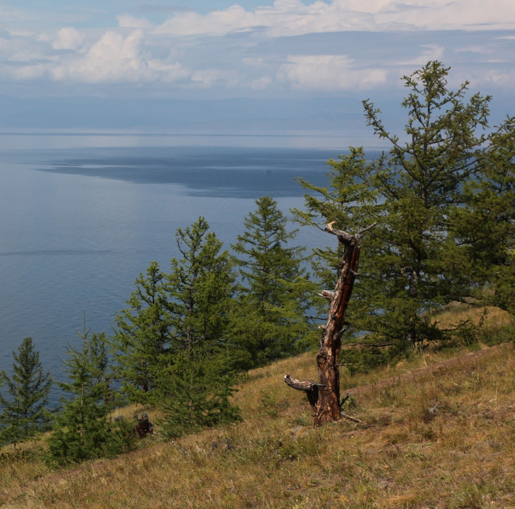 Zdjęcia: Olchon, Bajkał, Brzeg, ROSJA