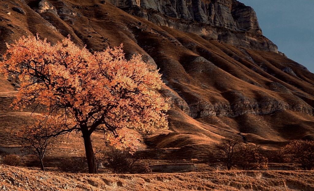 Zdjęcia: w drodze do Kubaczi, płn. Kaukaz, Jesień w Dagestanie..., ROSJA