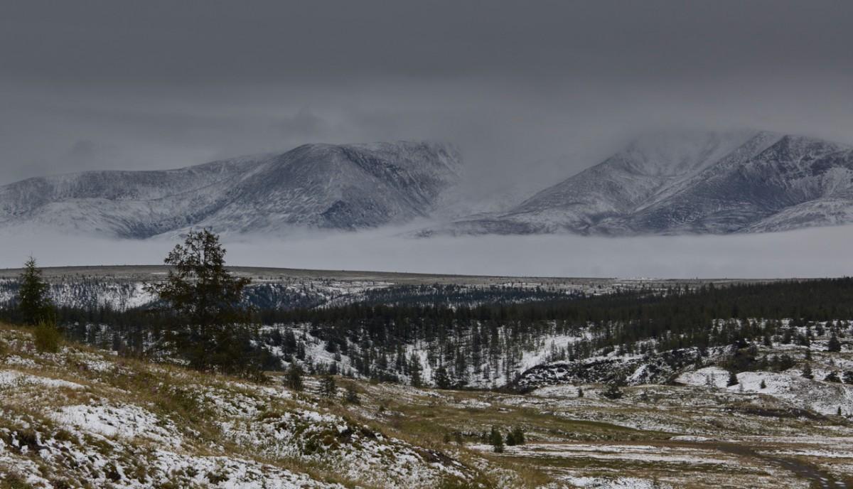 Zdjęcia: Góry Momskie, Jakucja ( republika Sacha ), jakuckie lato 2, ROSJA