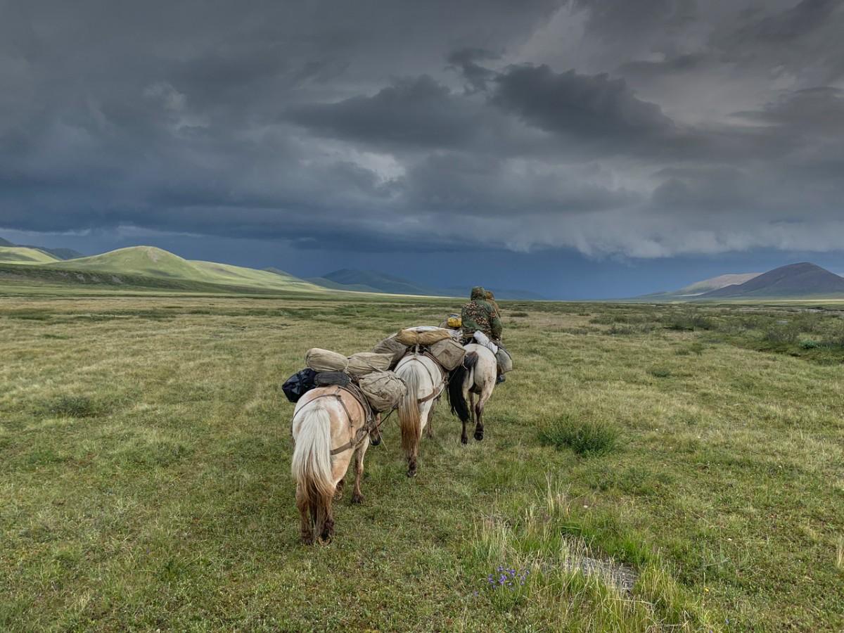 Zdjęcia: Góry Czerskiego pasmo Momskie, Jakucja ( republika Sacha ), rider on the storm, ROSJA
