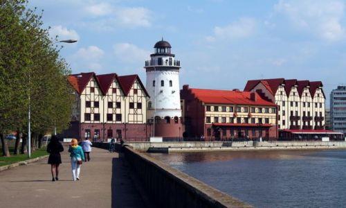 ROSJA / - / Kaliningrad / Spacer