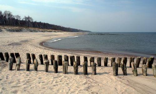 ROSJA / Obwód Kaliningradzki / Lesnoj / Puste plaże 4