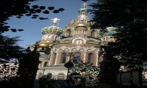 Zdjecie ROSJA / Sankt Petersburg / Kanał Gribojedowa / Sobór Zmartwychwstania Pańskiego