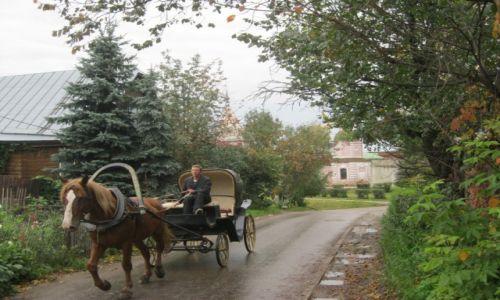 Zdjęcie ROSJA / Rosja / Okolice Syzdalu / Krajobraz rosyjski               KONKURS