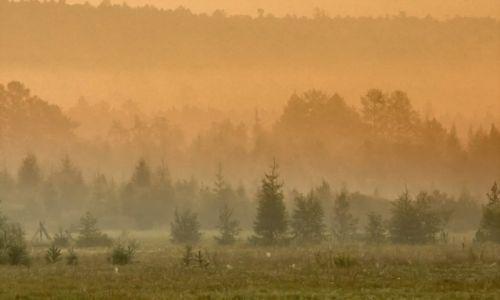 Zdjęcie ROSJA / Buriacja / okolice j. Bajkał / Nad Bajkałem z rana