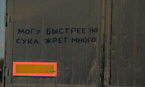 Zdjęcie ROSJA / Rosja płd-wsch / na drodze / No i co robić...