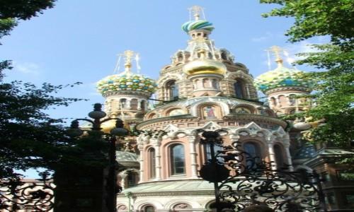 Zdjecie ROSJA / - / St. Petersburg / Sobór Zmartwychwstania Pańskiego