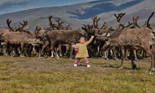 Zdjęcie ROSJA / Jakucja / Góry Czerskiego  /