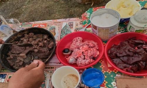 Zdjecie ROSJA / Jakucja ( republika Sacha ) / Góry Czerskiego pasmo Momskie / podano do stołu