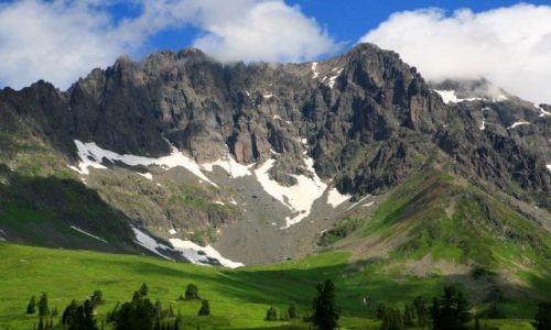 Zdjecie ROSJA / Syberia, Sajany Wschodnie / na podej�ciu pod szczyt Figurisow / pawie na miejsc