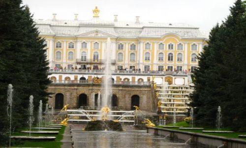 Zdjecie ROSJA / Sankt Petersburg / Peterhof / fontanny