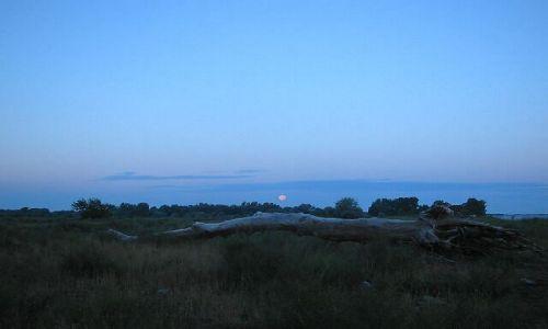 ROSJA / brak / okolice Astrachania / Wschod slonca nad Wolga