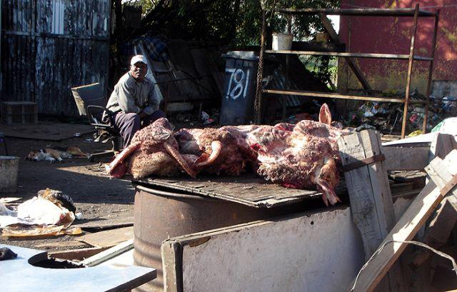 Zdjęcia: slamsy kapsztadu, mięsny, RPA