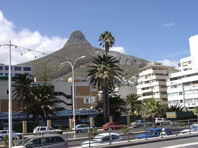 Zdj�cia: Cape Town, Lwi kie� w Cape Town, RPA