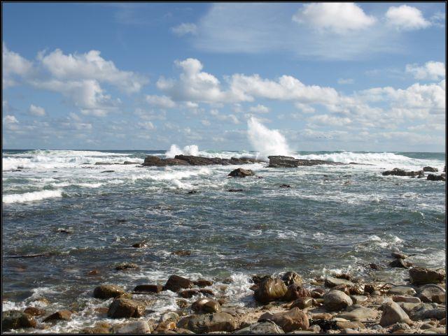 Zdjęcia: PDN, Przylądek Dobrej Nadziei,  ..., RPA