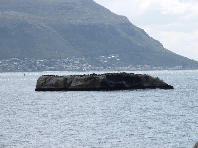 Zdjęcia: Cape Town, koniec świata, ...jest pewna wyspa..., RPA