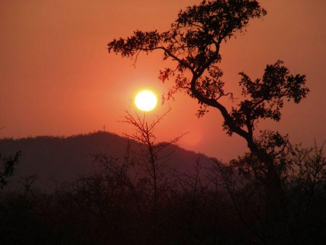 Zdjęcia: Park Narodowy Krugera, Prowincje Limpopo i Mpumalanga, Zew Krugera, RPA