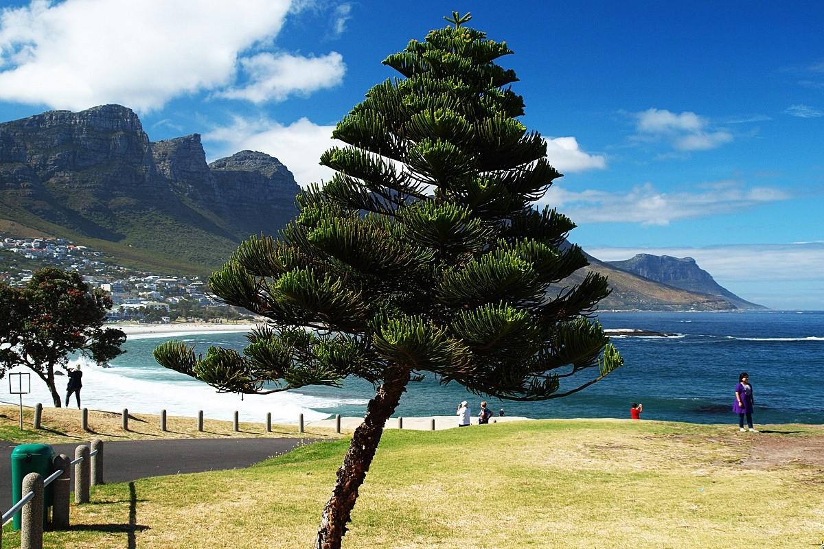 Zdjęcia: RPA, W  drodze ba Przyladek Dobrej Nadziei, RPA
