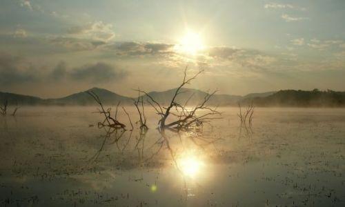 Zdjecie RPA / nad / jeziorem / Wschodzące słoneczko nad jeziorem w Afryce