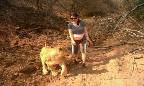 RPA / RPA / Park dla drapieżników / Spacer z lwami