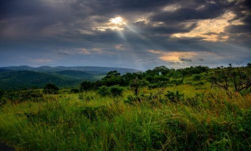 Zdjecie RPA / KWAZULU-NATAL / Hluhluwe Umfolozi Game Reserve / PRZED BURZĄ