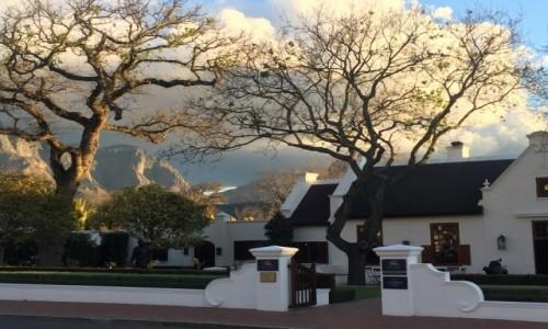 Zdjecie RPA / Okolice Kapsztadu / Franschhoek / Zima na winnicach