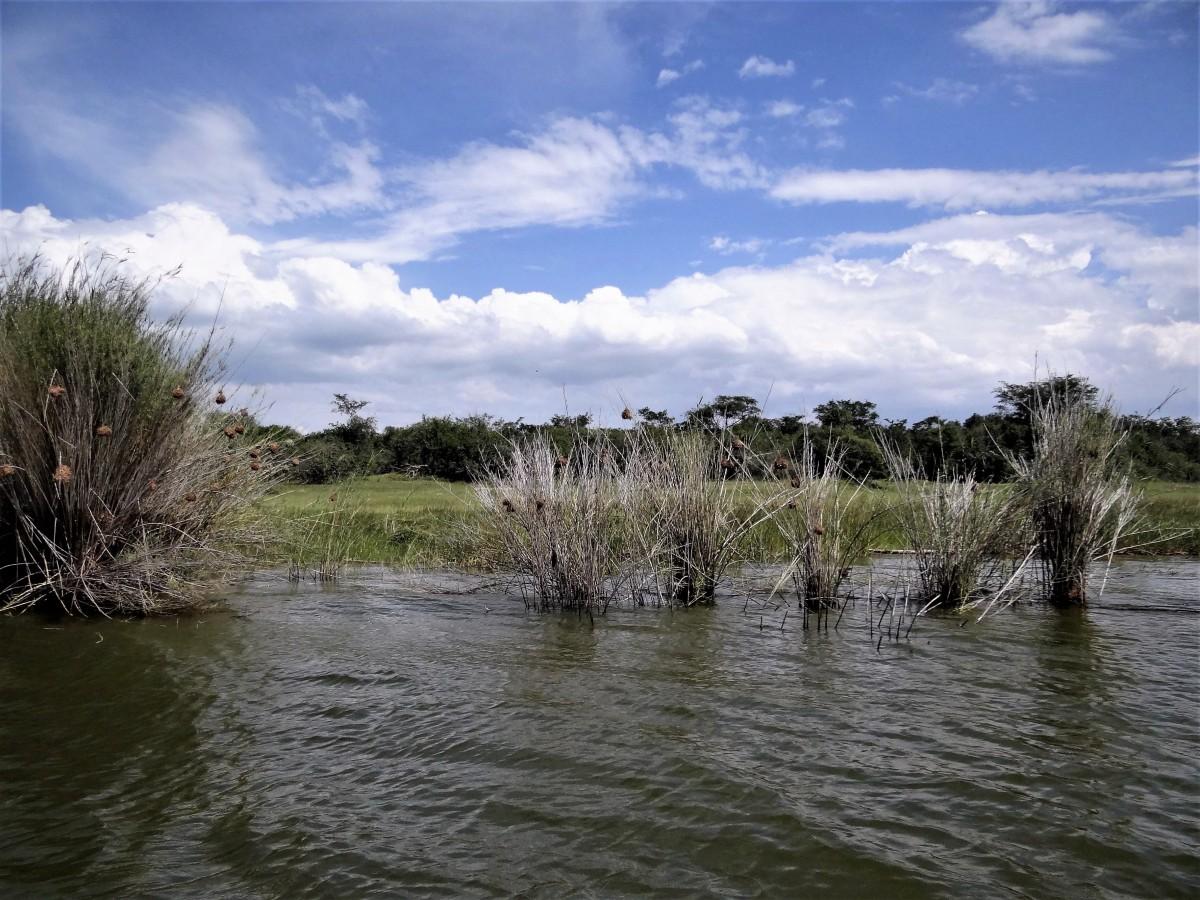 Zdjęcia: j.w., Park Akagera, Jezioro w parku Akagera, RUANDA