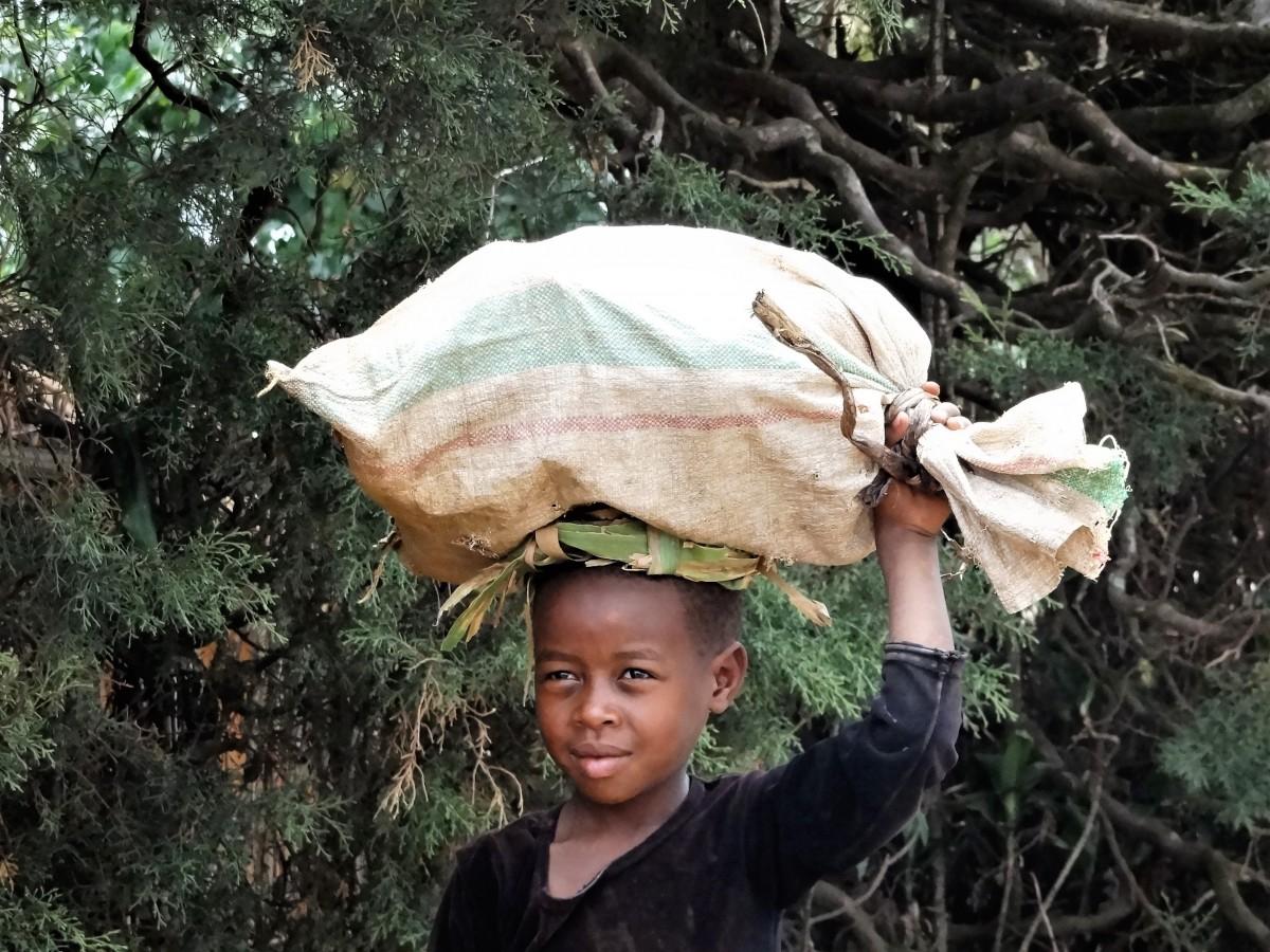 Zdjęcia: j.w., Okolice Kigali, Młody pomocnik, RUANDA