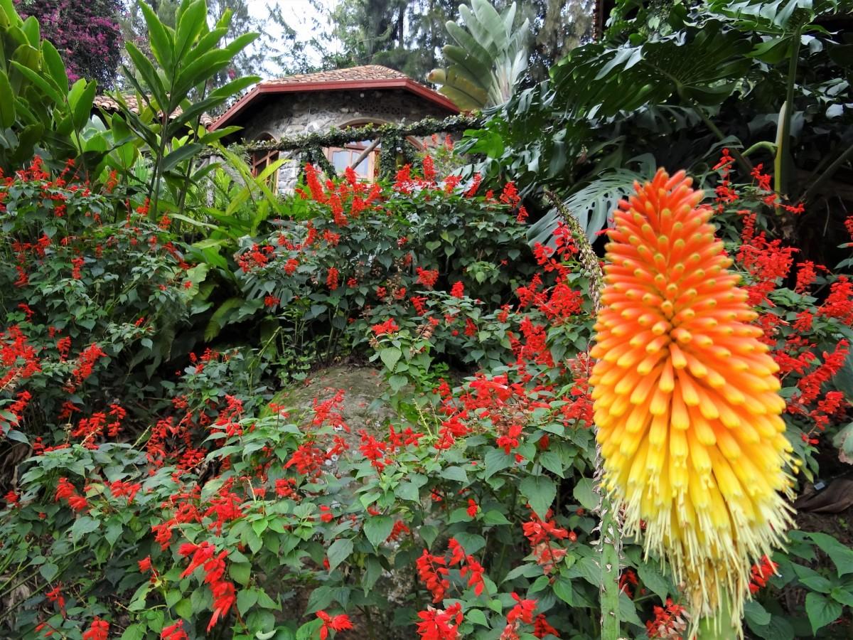 Zdjęcia: Kompleks hotelowy , Przy jeziorze Kivu, Urokliwy domek , RUANDA
