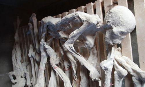 Zdjęcie RUANDA / Rwanda / Rwanda / Ludobójstwo