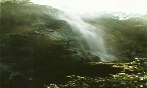 RUANDA / Płd. Rwanda / Nyungwe Forest / Wodospad Nyungwe
