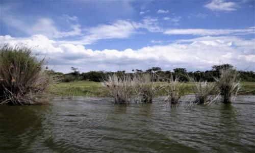 Zdjęcie RUANDA / Park Akagera / j.w. / Jezioro w parku Akagera