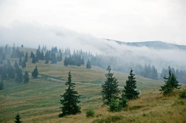 Zdjęcia: Pasul Prislop, Góry Rodniańskie, Poranek na przełęczy Prislop, RUMUNIA
