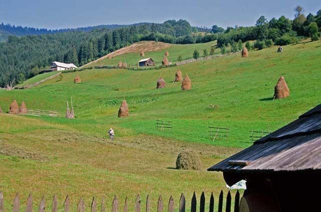Zdjęcia: Valea Secii, Góry Rodniańskie, W dolinie, RUMUNIA