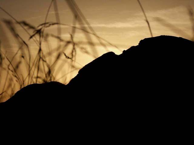 Zdjęcia: Saua Intre Izvoare, Góry Rodniańskie, Grań, RUMUNIA