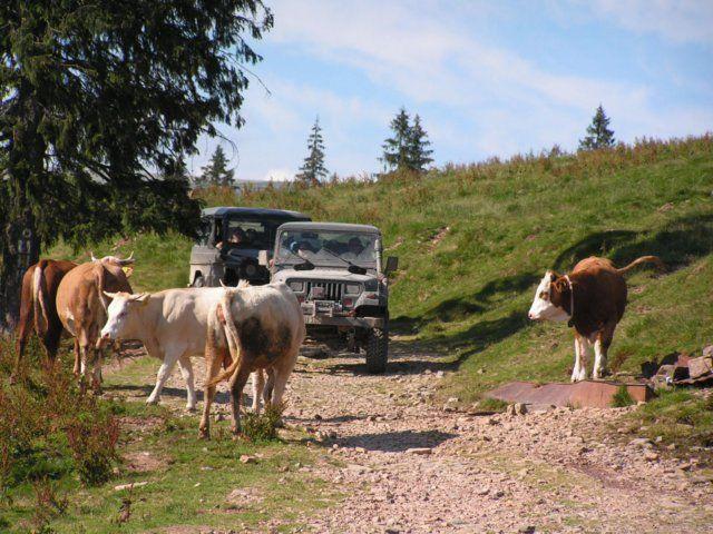 Zdj�cia: Rumunia, Rumunia  Trek 2007, RUMUNIA