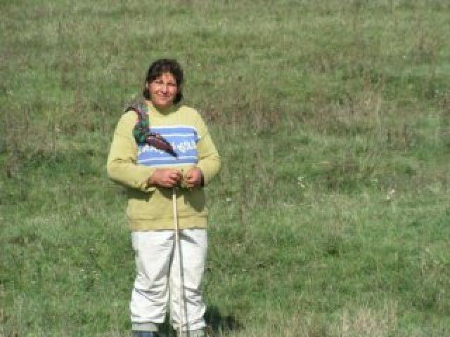 Zdjęcia: Aiud, Transylwania, Pasterka, RUMUNIA