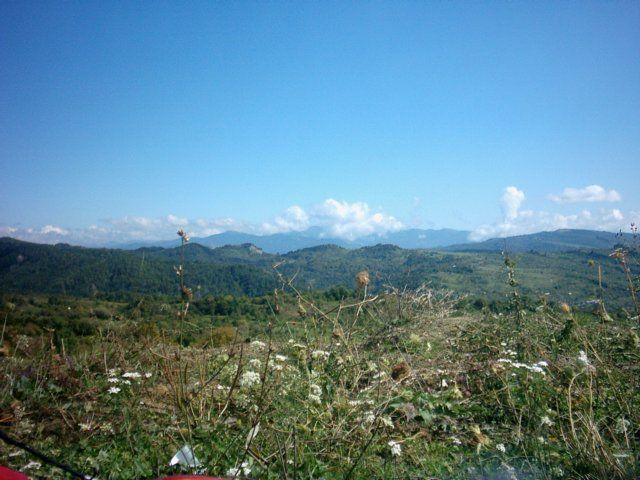 Zdjęcia: Dornesti, Karpaty Południowe, Góry w  ostrym słońcu, RUMUNIA