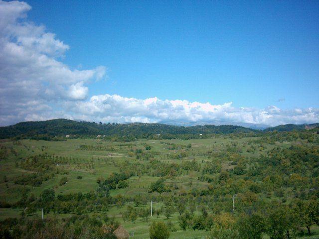 Zdjęcia: Dornesti, Karpaty Południowe, Góry w  ostrym słońcu c.d., RUMUNIA