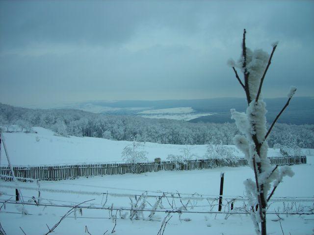 Zdjęcia: poza murem klasztornym, moldova, widok z hadambu, RUMUNIA
