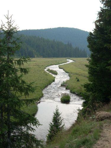 Zdjęcia: Gdzieś na odludziu..., Karpaty, Gdy strumyk płynie z wolna..., RUMUNIA