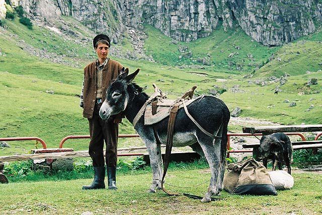 Zdjęcia: przed schroniskiem Malaesti, Bucegi, W górach..., RUMUNIA