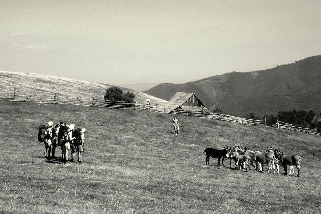 Zdjęcia: Góry Sybińskie, Transylwania, Karpaty Południowe, A gdzie piłka?, RUMUNIA