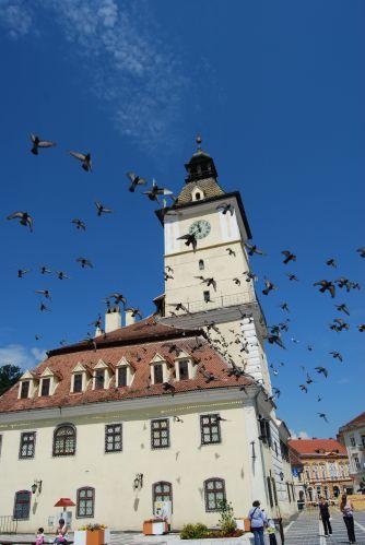 Zdj�cia: Brasov, Transylwania, Rynek, RUMUNIA