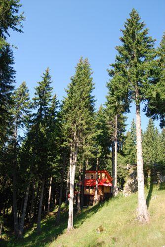 Zdjęcia: Góry BUCEGI, Transylwania, Chatka w górach, RUMUNIA