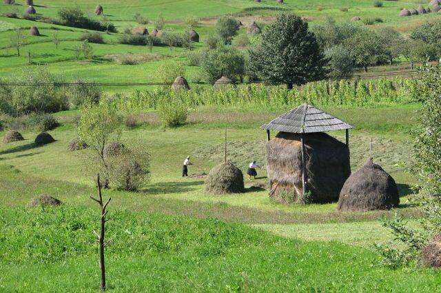 Zdj�cia: w drodze z Suczawy do Baia Mare, Bukowina, Kraina �agodno�ci, RUMUNIA
