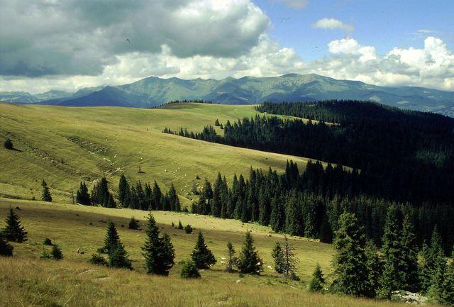 Zdj�cia: G�ry Wulka�skie, Transylwania, Karpaty Po�udniowe, O�lica przynosi burz�, RUMUNIA