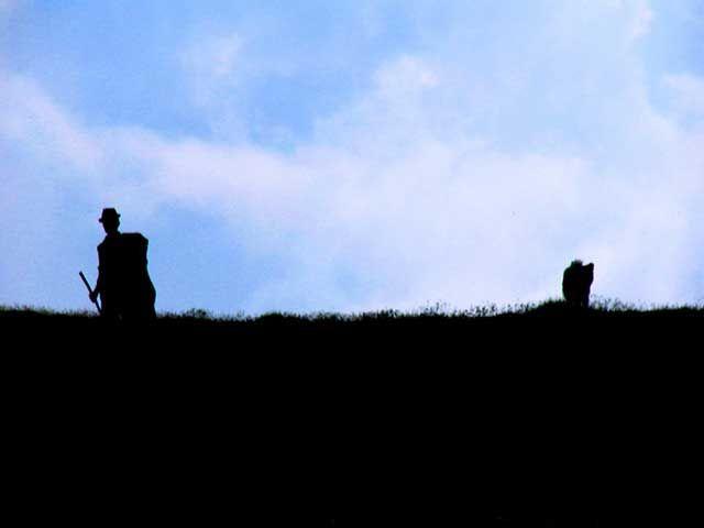 Zdjęcia: przełęcz Suru, Góry Fogarskie, Pasterz, RUMUNIA