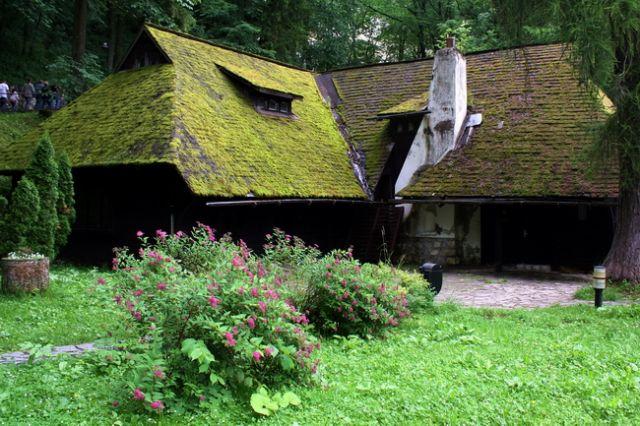 Zdjęcia: Bran, Transylwania, Zielona chata, RUMUNIA